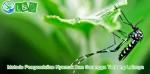 Metode Pengendalian Nyamuk Dan Serangga Terbang Lainnya