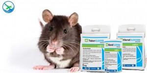 obat pembasmi tikus dan kecoa