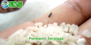 pembasmi serangga